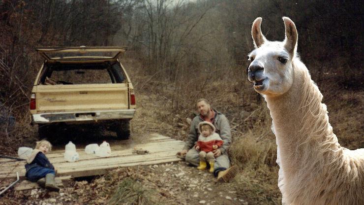 BFN 022 – Llama Wrangling